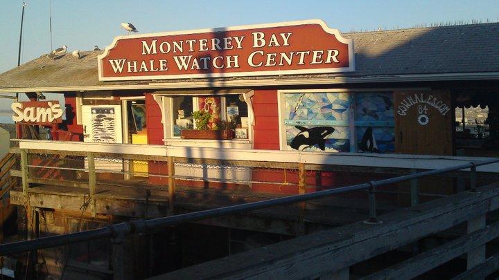 Monterey Bay Whale Watch Centre