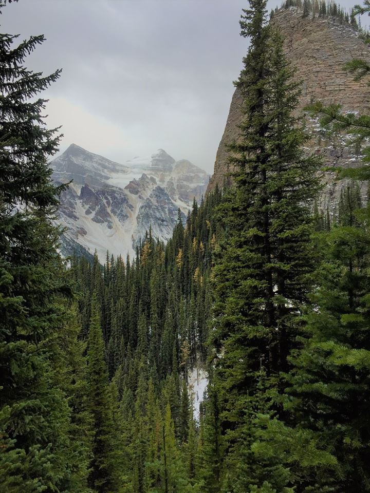 The Beehive, a mountain only accessible from the Lake Agnes Trail