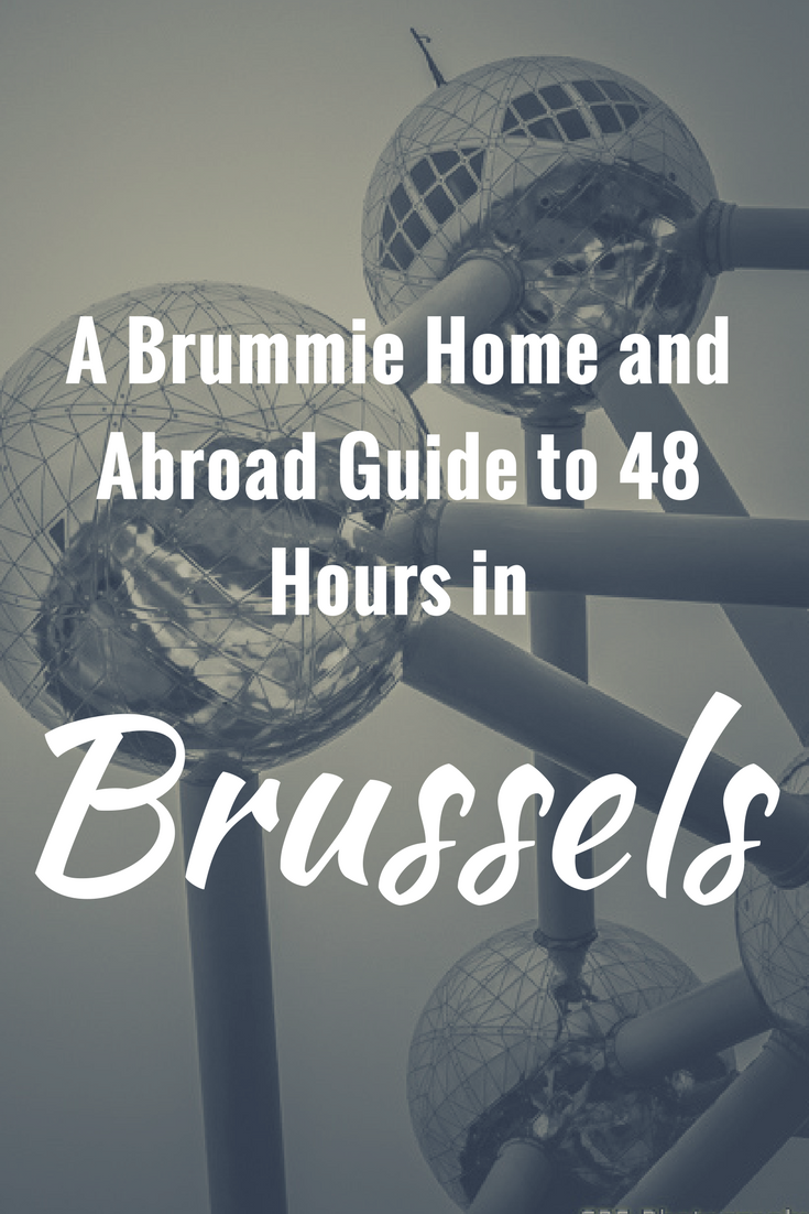 48 Hours in Brussels - Pin