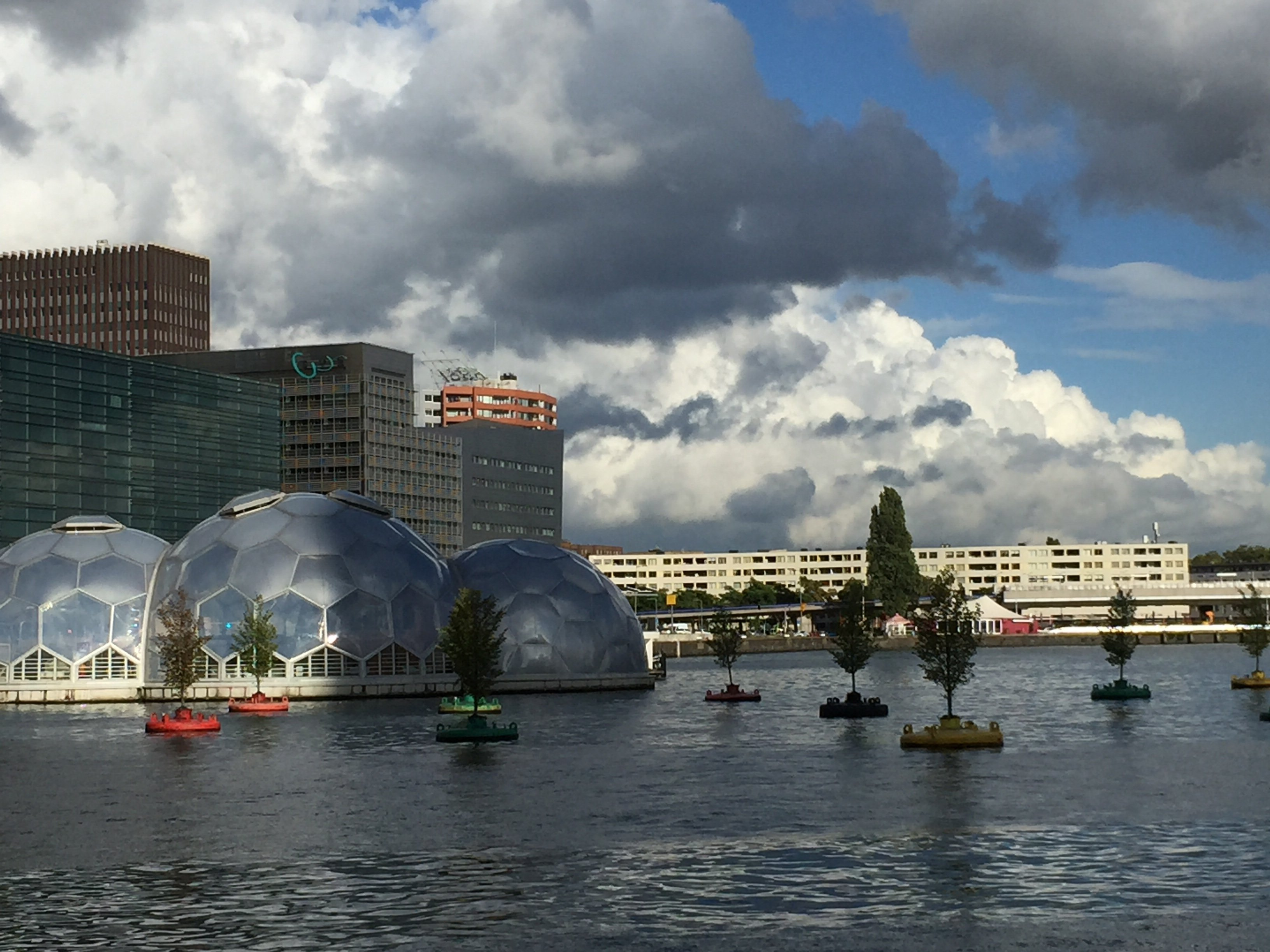 The Floating Pavillion and Bobbing Forest, sustainable Rotterdam