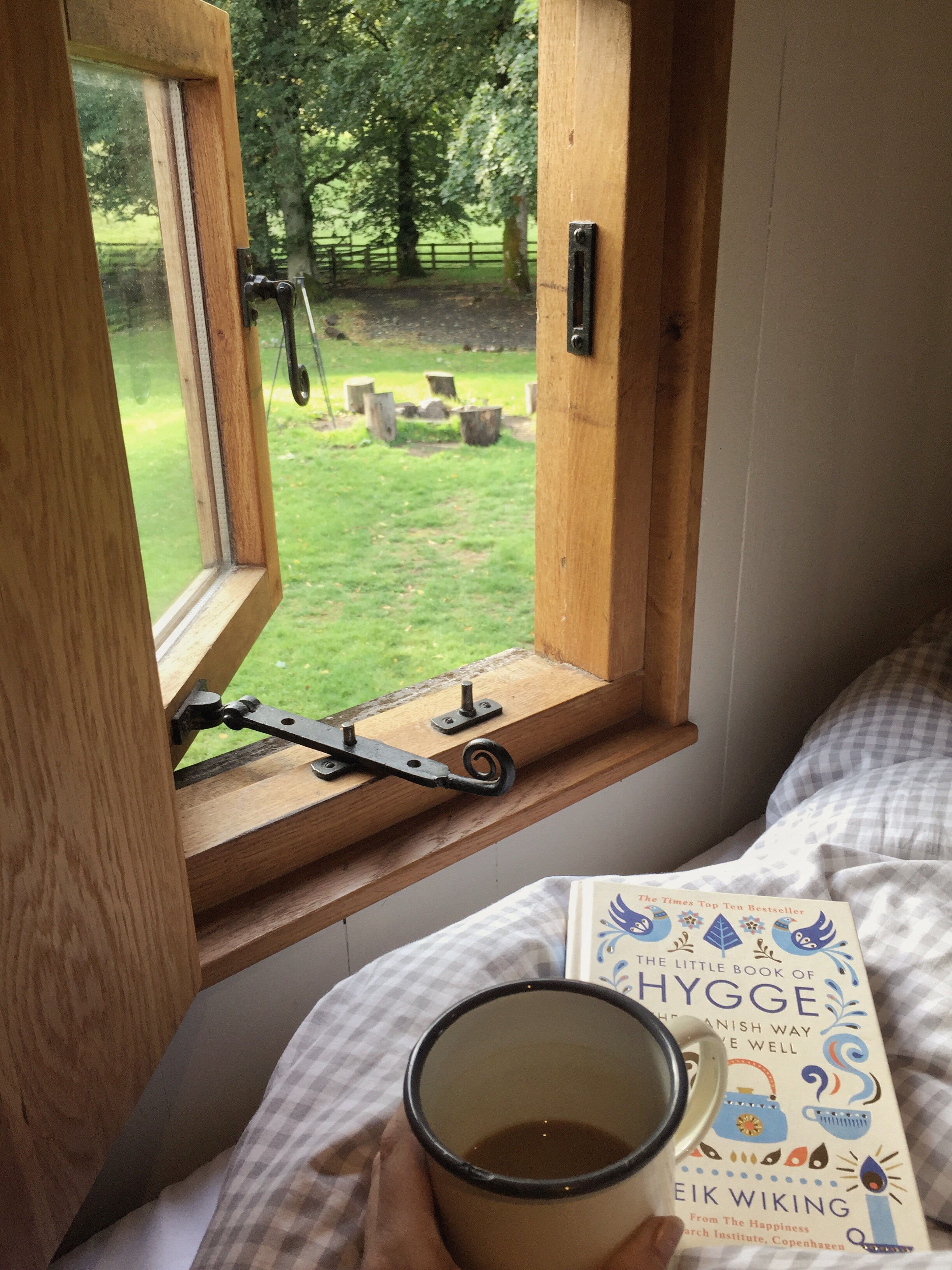 View from a shephers hut window on a crisp autumn morning, accompanied by a cup of tea and the little book of hygge