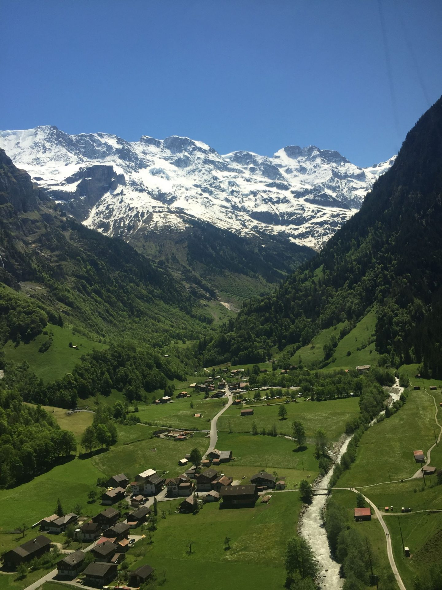 Swiss alps and green meadows