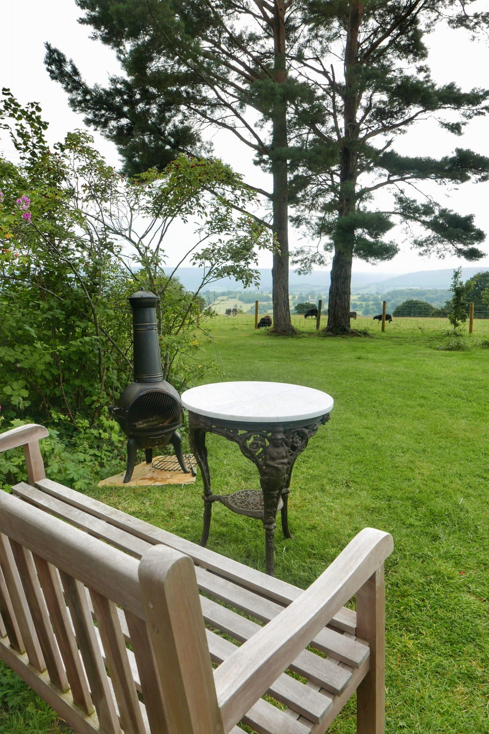 Bench, table and chimenea, overlooking trees and sheeps